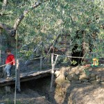 Farm Holidays La Baghera - La Baghera Alta - Playground