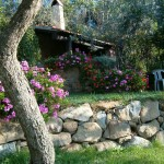 Farm Holidays La Baghera - La Baghera - Barbecue and Swimming Pool