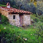 Farm Holidays La Baghera - La Baghera - Cot