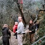 Farm Holidays La Baghera - Olives Picking